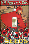 DM Ferry & Co Seeds - Little Red Riding Hood