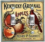 Kentucky Cardinal Apples
