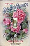 Scotts Roses