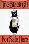 Black Cat for Sale