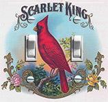 Cardinal - Scarlet King