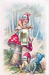 Mushrooms and Gnomes