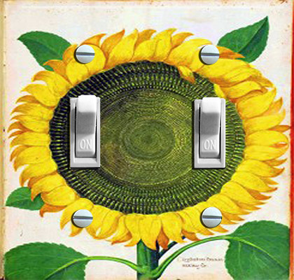 Sunflower Italian