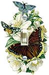 Vintage Butterfly & Dogwood