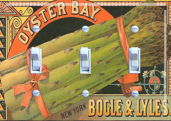Asparagus - Oyster Bay NY