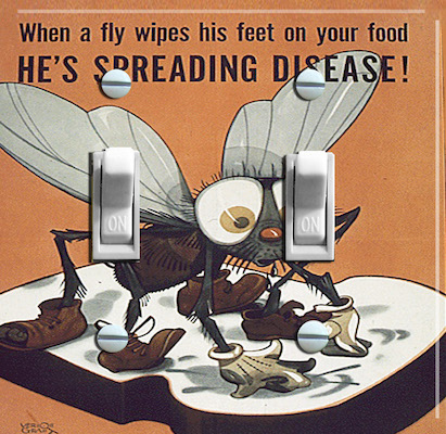 Fly Germs