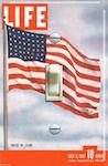 1942 Life Magazine United We Stand