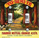 Yo-semi-te Oranges